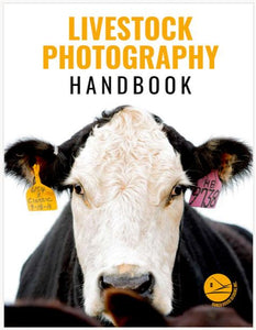 RHD Livestock Photography Handbook - A Guide to Picturing Cattle