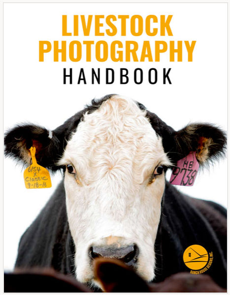 RHD Livestock Photography Handbook - A Guide to Picturing Cattle - Digital Download