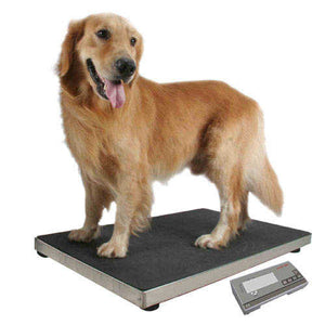 Digital Veterinary Scale - MS2210R