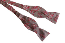 Brown Paisley Silk Bow Tie