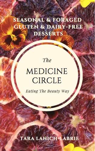 The Medicine Circle DESSERT eBook: A Year of Seasonal & Foraged, Gluten & Dairy-Free Desserts