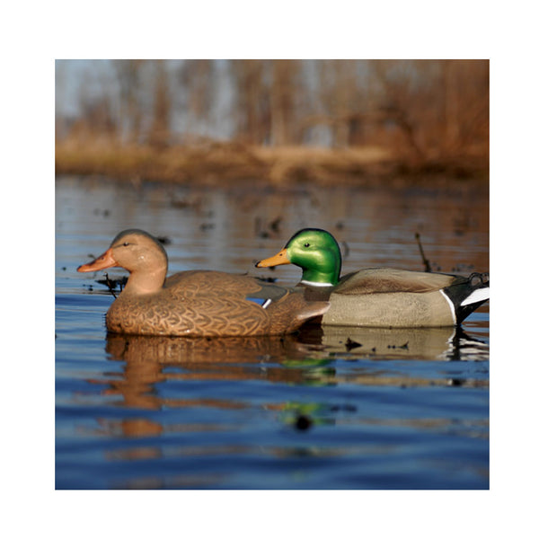 AVERY Hot Buy 12 Pack of Standard Mallard Decoys (70001)