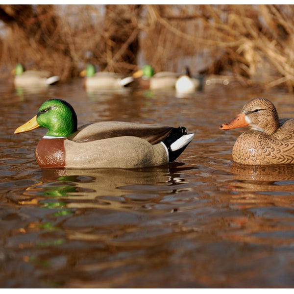 AVERY Hot Buy 6 Pack of Magnum Mallard Decoys (70002)