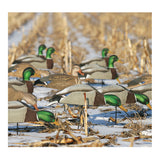AVERY 12 Pack of Over-Size Mallard Shell Harvester Decoys (70167)