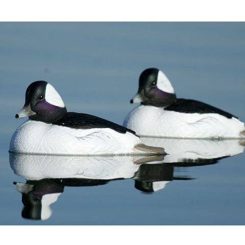 AVERY 6 Pack of Over-Size Bufflehead Decoys (71048)