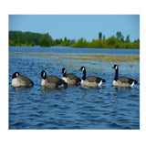 AVERY 6 Pack of FFD Elite Honker Floaters Harvester Decoys (71094)