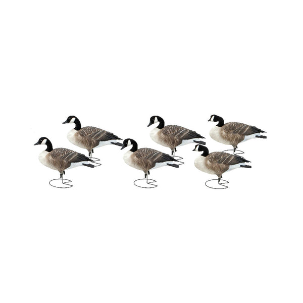 AVERY 6 Pack of Commercial Grade Full Body Honkers Active Decoys (71550)
