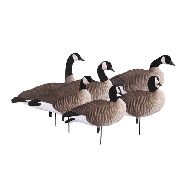 AVERY FFD Lessers Active Pack Decoys With 6 Slot Bag (72305)