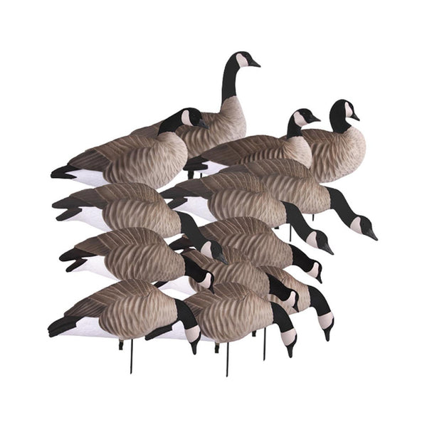 AVERY 12 Pack of Lesser Canada Harvester Decoys (72323)