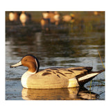 AVERY 6 Pack of Life-Size Pintail Decoys (73033)