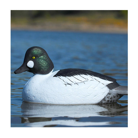 AVERY 6 Pack of Over-Size Goldeneye Decoys (73047)