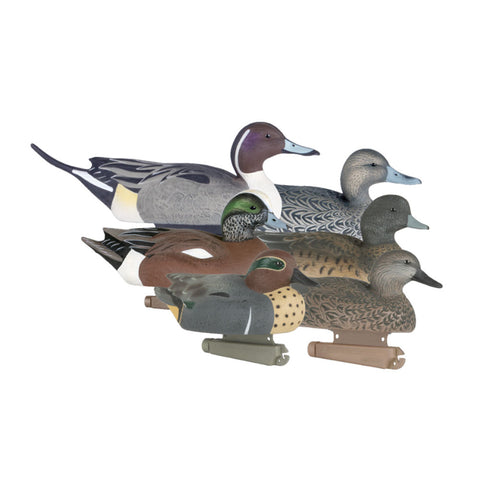 AVERY 6 Pack of Life-Size Puddler Duck Pack II Decoys (73110)