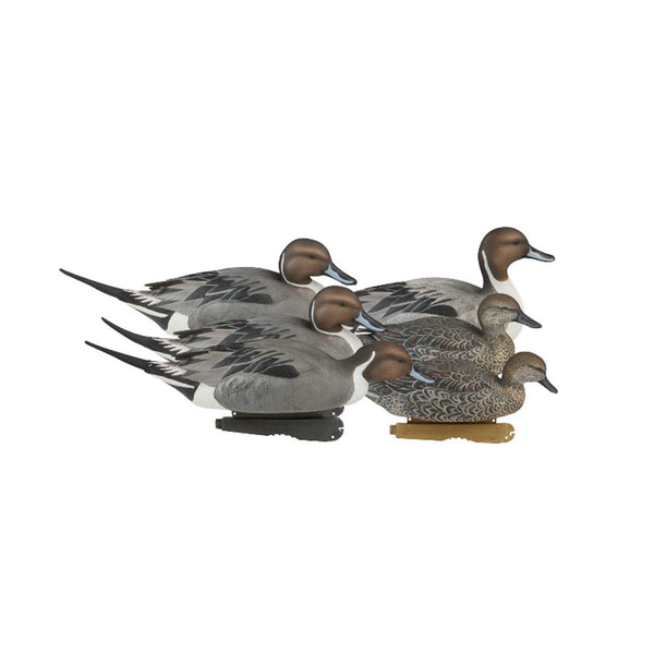 AVERY 6 Pack of Pro-Grade Pintail Decoys (73131)