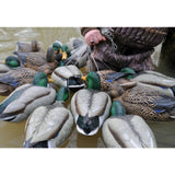 AVERY 6 Pack of Pre-Rigged Pro-Grade Mallard Rester Decoys (75108)