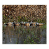 AVERY 6 Pack of Pre-Rigged Pro-Grade Wigeon Decoys (75143)