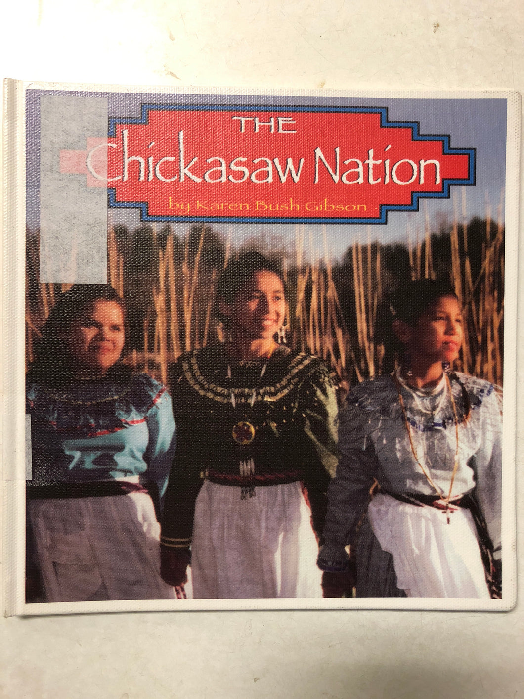 The Chickasaw Nation - Slick Cat Books