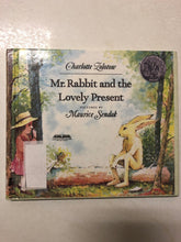 Mr. Rabbit and the Lovely Present - Slick Cat Books