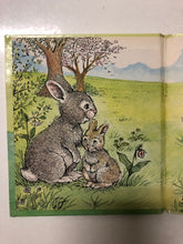 Little Gray Rabbit - Slickcatbooks
