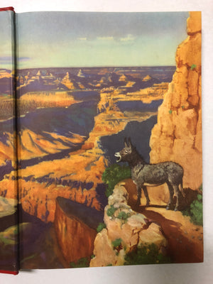Brighty of the Grand Canyon - Slickcatbooks