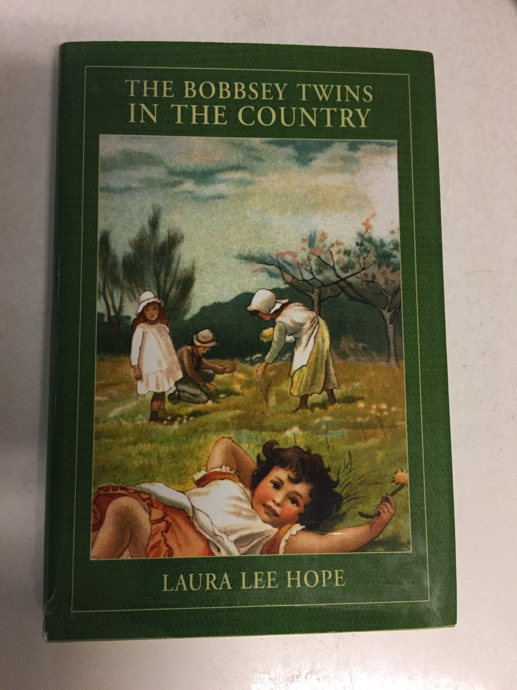 The Bobbsey Twins in the Country - Slickcatbooks