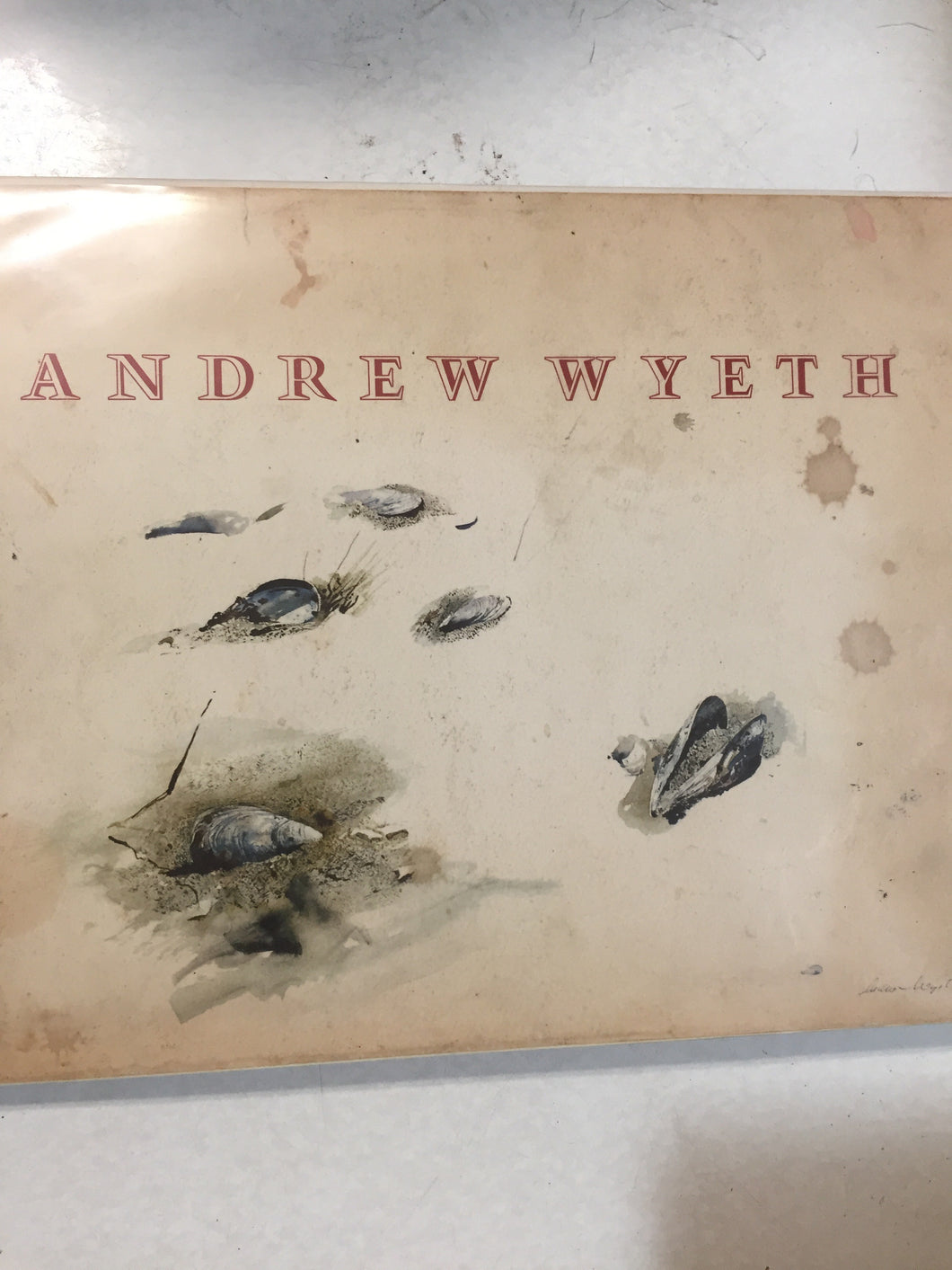 Andrew Wyeth Boston Museum - Slick Cat Books