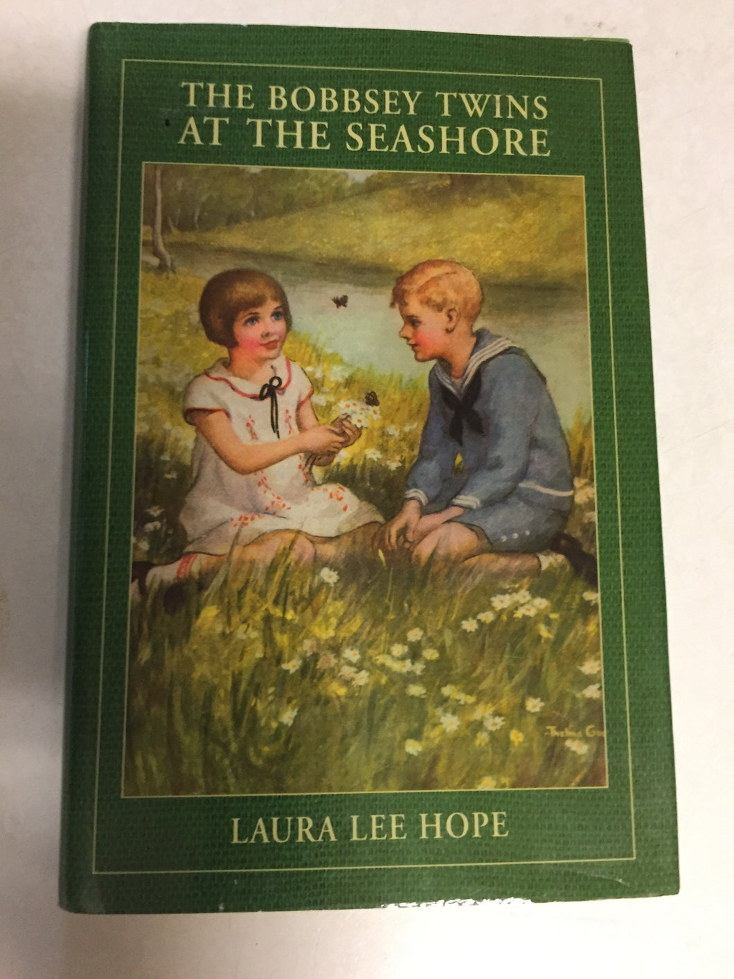 The Bobbsey Twins at the Seashore - Slickcatbooks