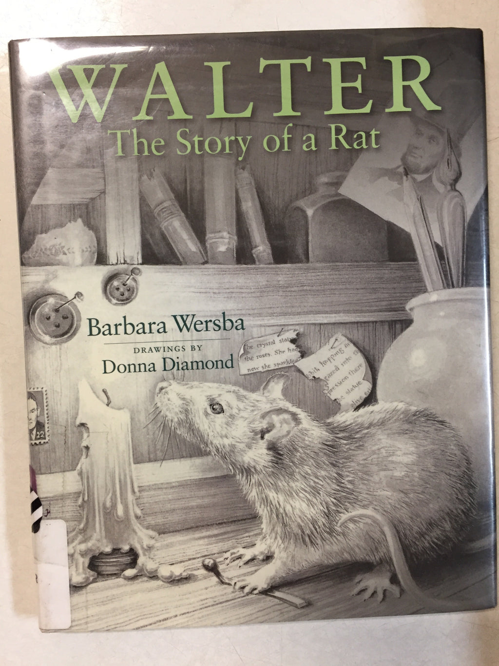 Walter The Story of a Rat - Slickcatbooks