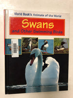 Swans and Other Swimming Birds - Slick Cat Books