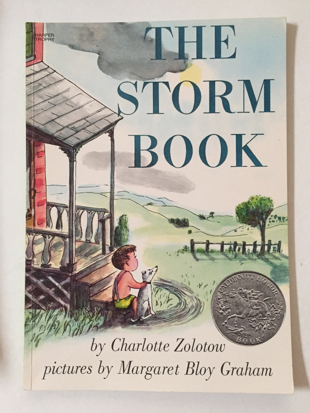 The Storm Book - Slickcatbooks