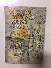 Sleeping Beauty at Sugar Creek - Slickcatbooks