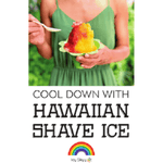 PDOJ-M-500 Shaved Ice Business Package - Standard - IcySkyy