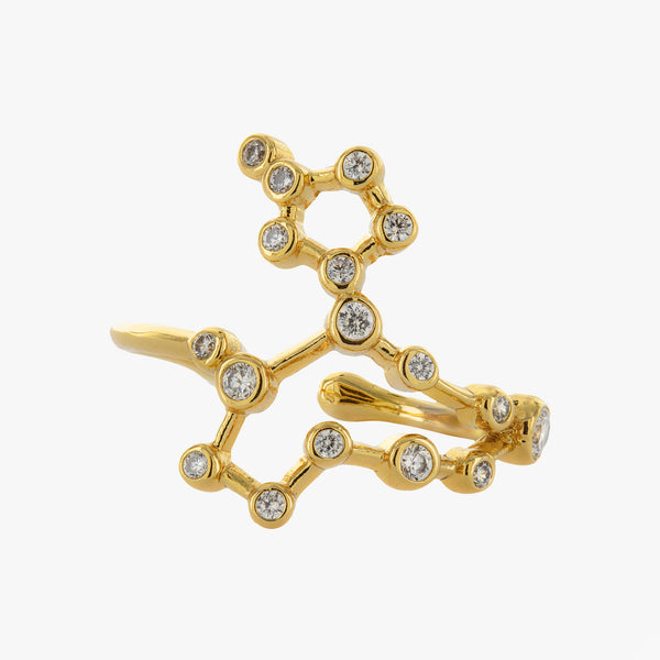 Pisces Adjustable Zodiac Ring