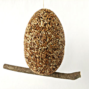 Bird Feeder - Eggnormous