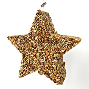 Bird Feeder - Star