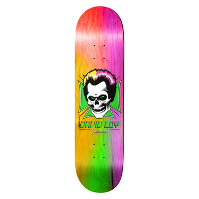 David Loy Skull Rainbow Deck 8.38""