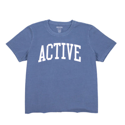 Ivy League Faded Tee - Faded Blue