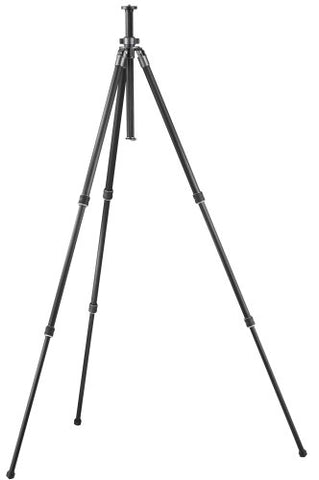 Gitzo GT1931 Sport Series 1 Basalt 3-Section Tripod