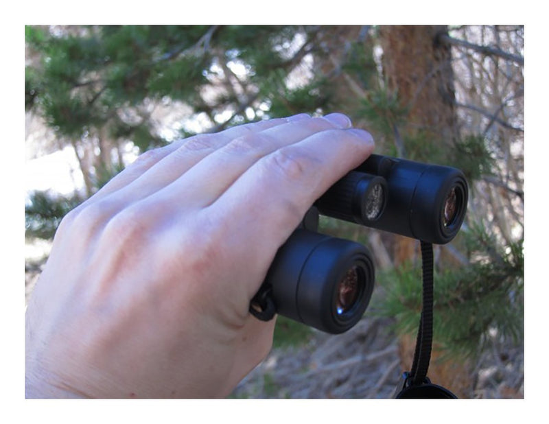 Leica Ultravid BR 10x25 Compact Binocular with AquaDura Lens Coating, Black