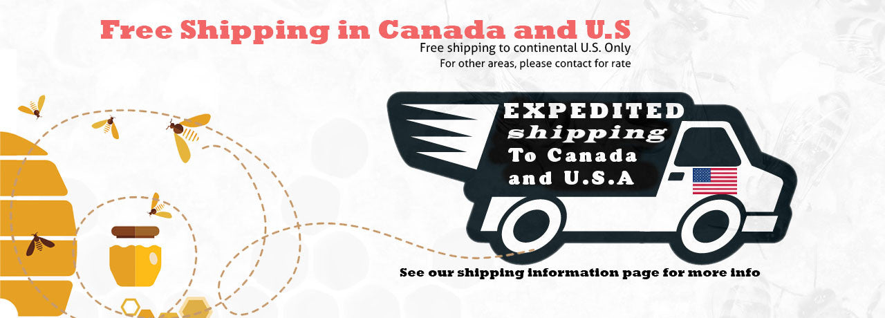 Free shipping to Canada and U.S