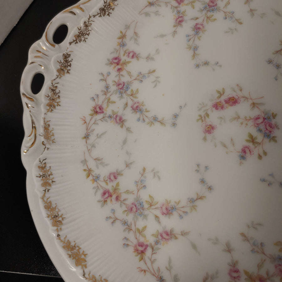 Germany, roses, sandwich plate