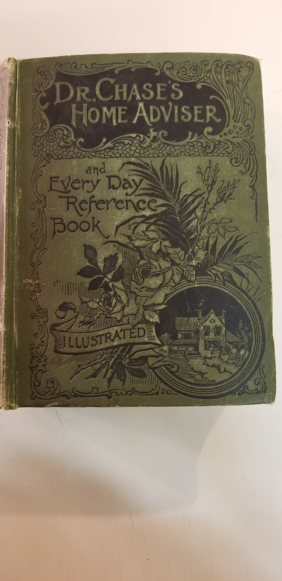 Doctor Chase's home advisor and everyday reference book, 1894 detroit, mi.