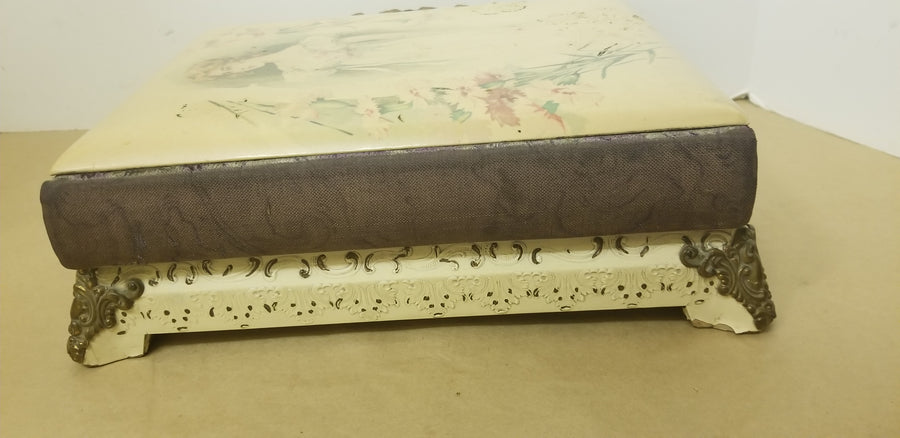 Victorian celluloid musical photo album