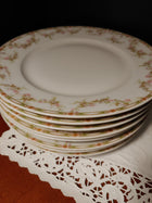 Haviland dinner plates, 8, pink roses, green band