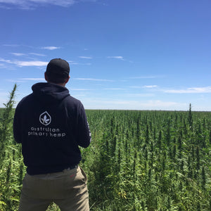 Australian Primary Hemp Crop