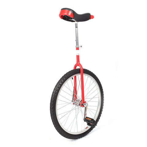 24'' Pro Circus Unicycle Bike - Kids Car Sales