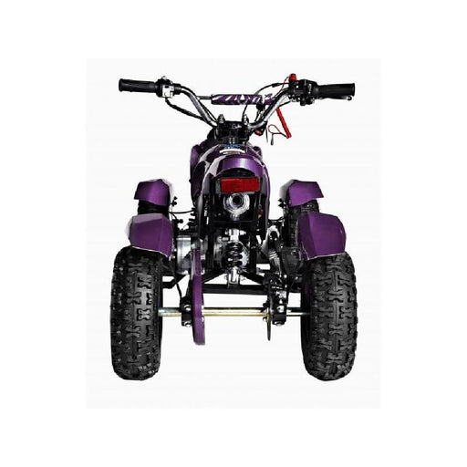 GMX GMX Junior 49cc Petrol-Powered 2-Stroke Kids Quad Bike
