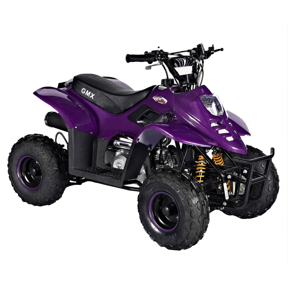 GMX Purple GMX Ripper 110cc Petrol-Powered 4-Stroke Kids Sports Quad Bike - Purple GE-YB110-PUR