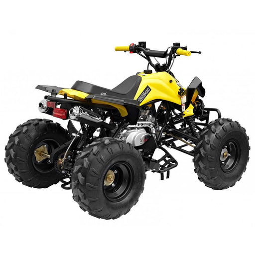 GMX GMX The Beast 125cc Petrol-Powered 4-Stroke Sports Quad Bike