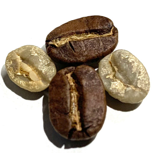 green and brown coffee bean