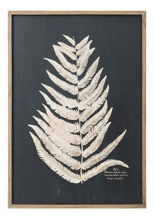 Fern Wall Art A